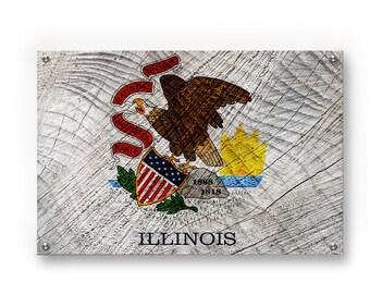 Illinois State Flag Graffiti Wall Art Printed on Brushed Aluminum