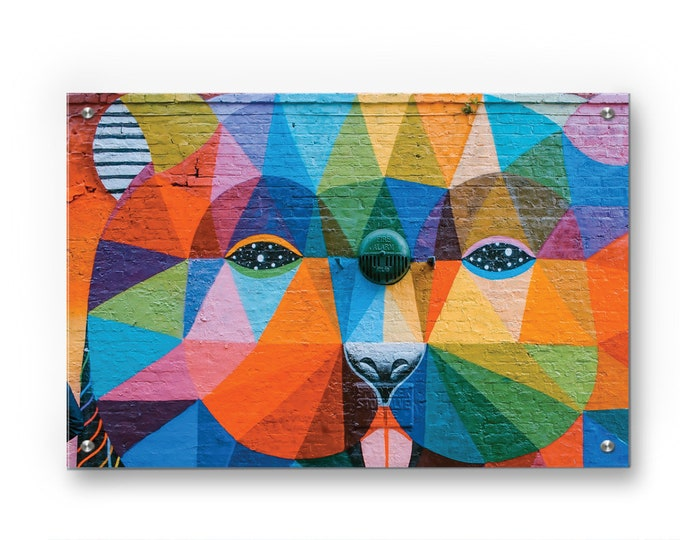 Psychedelic Bear Graffiti wall art printed on refined aluminum