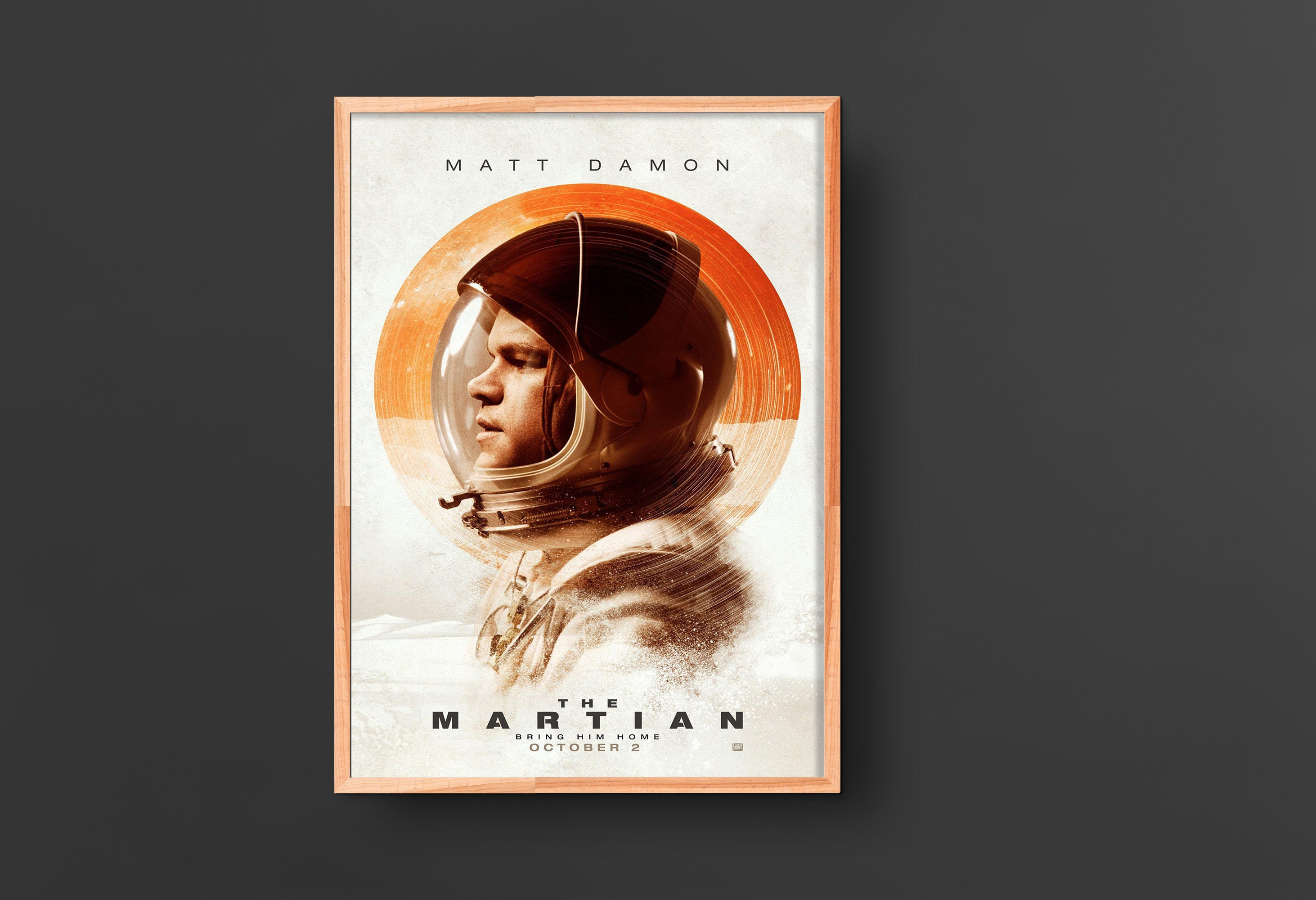 The Martian Movie Poster 2015