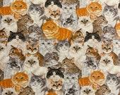 Cats Medley Cloth Mask
