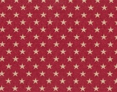 Golden Stars on Red Background Cloth Mask