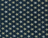 Patriotic White Stars on Blue Background Cloth Mask