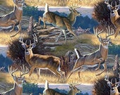 Deer 12 Point Buck Allover Cloth Mask