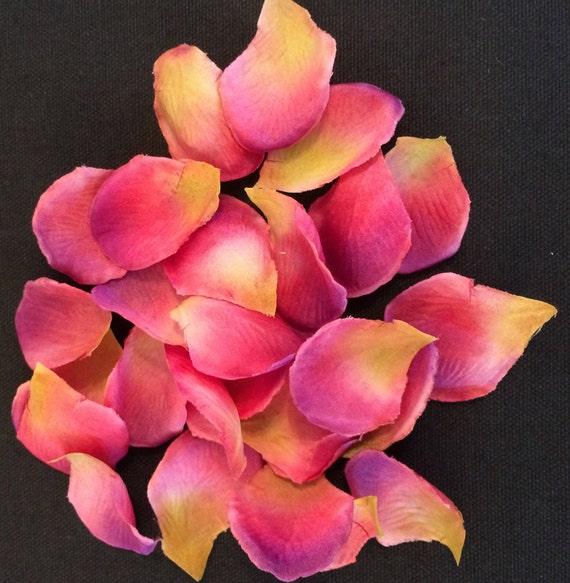 Silk flower petals pink 1000 piece package etsy image 0 mightylinksfo