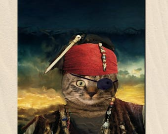 Cat costume, pirate cat