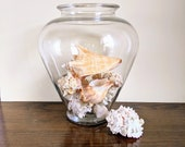 Large Glass Amphora Vase With Shells Nautical Beach House Tropical Decor Conchs Coral Jar Natural Shells
