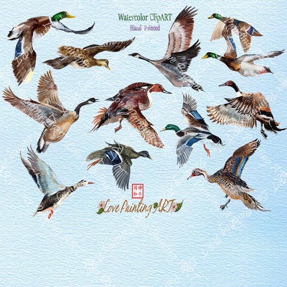 Watercolour Duck Print Cute Hand painted Illustration Printable Digital Download Animal Portrait