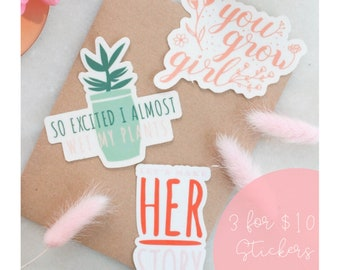 3 for 10 Punny Sticker Mix & Match