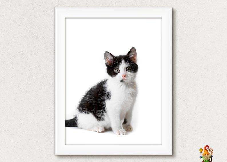 photograph about Kitten Printable named Kitten print Adorable kitten poster Kitten printable wall artwork Animal print wall artwork Animal poster printable artwork Nursery wall artwork decor