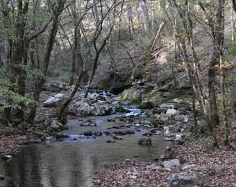 A River Runs Through The Fall
