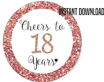 Cheers To 18 Years Cupcake Toppers Happy Birthday Favor Tags 18th Party Decor Funny Decorations Rose Gold Cake