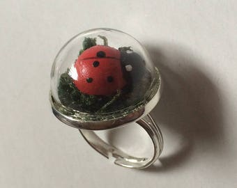 What is this ring? Ladybug dome ring