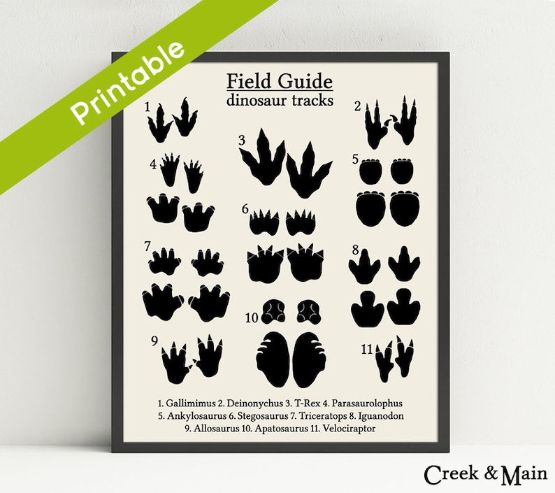graphic regarding Printable Dinosaur Footprints known as Dinosaur Songs Print, Printable, Dinosaur Nursery Artwork, Animal Tunes, Dinosaur Footprint, Dinosaur Nursery, Little ones Dinosaur Bed room, Dino Artwork