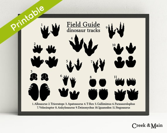 image regarding Printable Dinosaur Footprints named Dinosaur Footprints, Printable, Dinosaur Nursery Artwork, Animal Songs, Dinosaur Decor, Boys Bed room Wall Artwork, Dino Footprints, Nursery Print