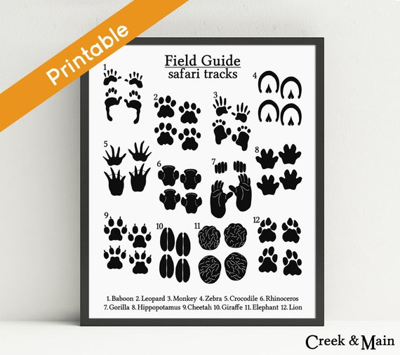 graphic about Printable Animal Tracks named Animal Songs Print, Safari Nursery Print, Printable, Jungle Boy or girl Shower, Footprints, Animal Nursery Artwork, Little ones Safari Bed room, Black White