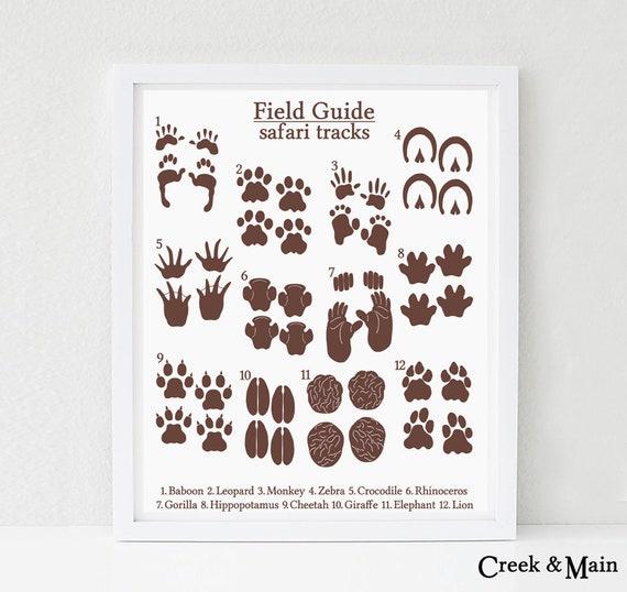picture relating to Printable Animal Tracks titled Jungle Nursery Print, Printable, Animal Music, Safari Boy or girl Shower, Animal Footprints, Animal Nursery Artwork, Youngsters Jungle Bed room, Safari Artwork