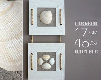 Shells and limed white wooden frames