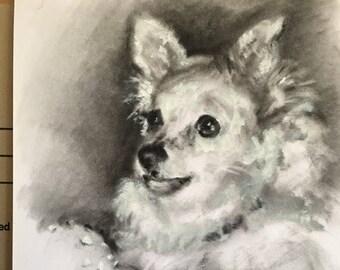 Pet portrait, dog portrait, pencil portrait, pet portrait custom, hand drawn portrait, pet loss, dog drawing, pet memorial, pet illustration