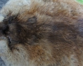 REAL MUSKRAT, Muskrat fur, Muskrat  pelt, tanned pelt, hide, skin, real fur- sewing supplies- Super soft!