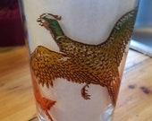 Pheasant Cocktail Glass -Whiskey hi-ball Tumbler Hunting Birds, fowl- Drinking Glass - vintage bar ware - bright colors