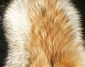 COYOTE FUR -Real pelt- ta...