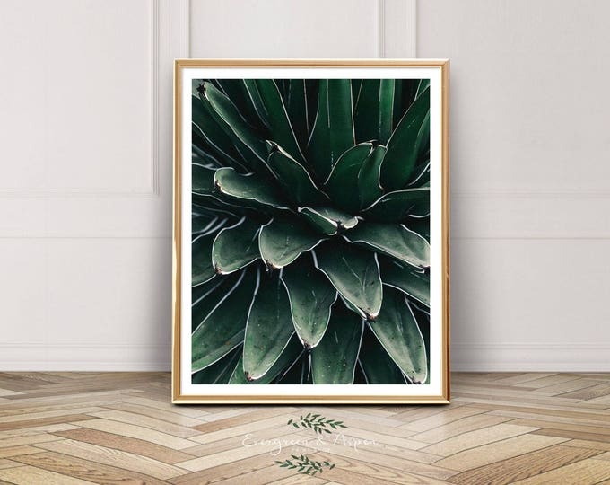 Featured listing image: Printable Wall Art Leaves, Printable wall art floral, Botanical Garden, Leaves, Succulent, Cactus, Photograph, Photo, Living room wall art