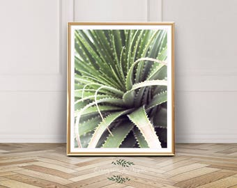 Printable Wall Art Leaves, Southwest Wall Art, Cactus Print, Botanical Print, Digital Download, Desert Print, Modern Wall Art, Modern Art