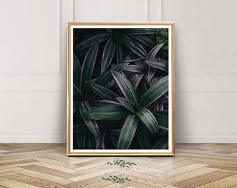 Green Leaf Print, Tropical leaf print photography, Tropical Home Decor, Modern Wall Art, scandinavian print, scandinavian printable, Nursery