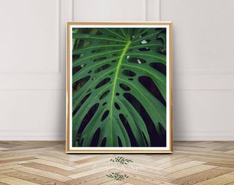 Palm Leaf, Photography, Tropical, Instant Download, Palm Leaf, Leaf Art, Tropical Print, Green, Seattle