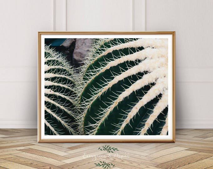 Featured listing image: Cactus Print, Southwest Decor, Digital Download, Modern Photo, Modern Art, Desert Print, Wall Art, Bohemian Photography