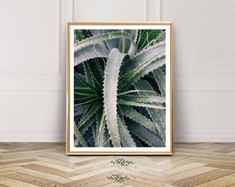 Plant Leaves Wall Photo, Plant Art Printable, Digital Download, Botanical Print, Wall Decor, Modern Decor, Modern Art, Bohemian
