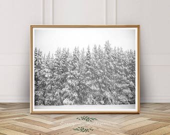 Forest Photography, Instant Digital Download, Christmas Wall Art, Winter, Leaves, Modern Art, Bohemian Art,Printable Wall Art, Photography