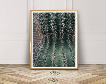 Cactus Print, Desert Print, Instant Download, Instant Photo, Cactus, Desert, Wall Art, Green