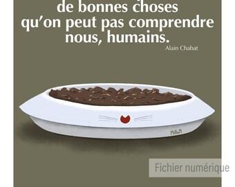 Affiche numérique  - humour - illustration - chat - humour // Les nuls Kwiskas