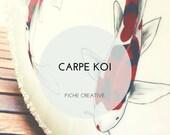 Carpe Koi - Fiche créative peinture sur porcelaine