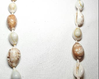 Cowrie shell adornment