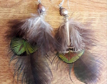 Earrings feathers and pearls