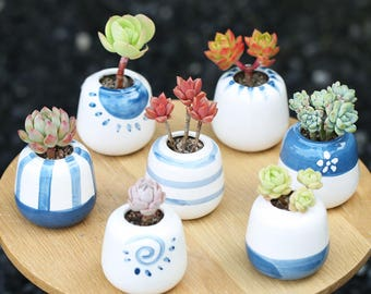 Set of 7 - Ceramic Planter Set for Succulent, Cactus, Air Plants, Succulent Planter, Mini Planter, Ceramic Planter, Ceramic Pot, Mini Pot