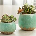 Set of 2 - Green Ceramic Planters,Succulent Planter,Ceramic Planter,Home Decor,Simple Gift,gift idea, Office Decor, Plant Pot
