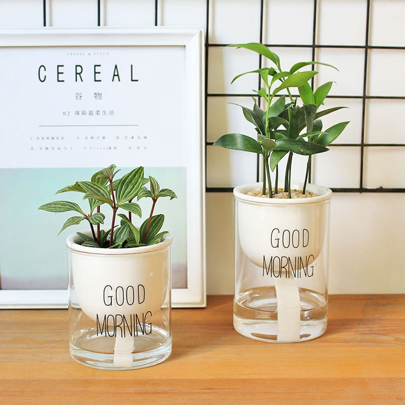 Set of 2  Self-watering Ceramic Planters with Glass image 0