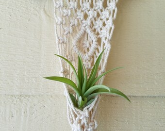 Small Macrame Air Plant holder (air plant not included)
