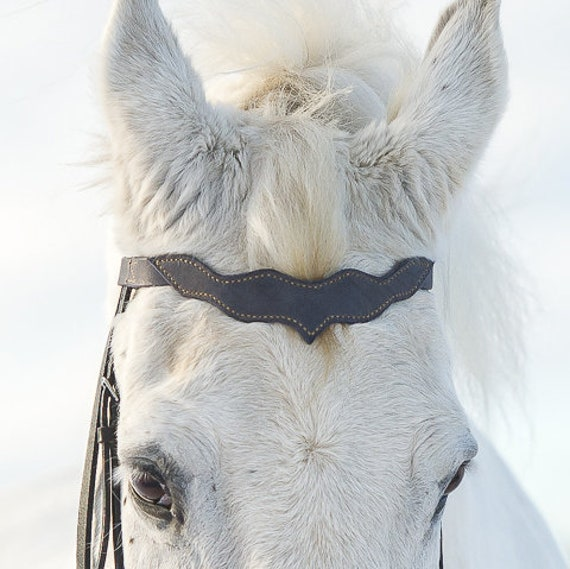 cb5a36621c793 Leder-Stirnriemen für Pony Pferd Entwurf vorgefertigten