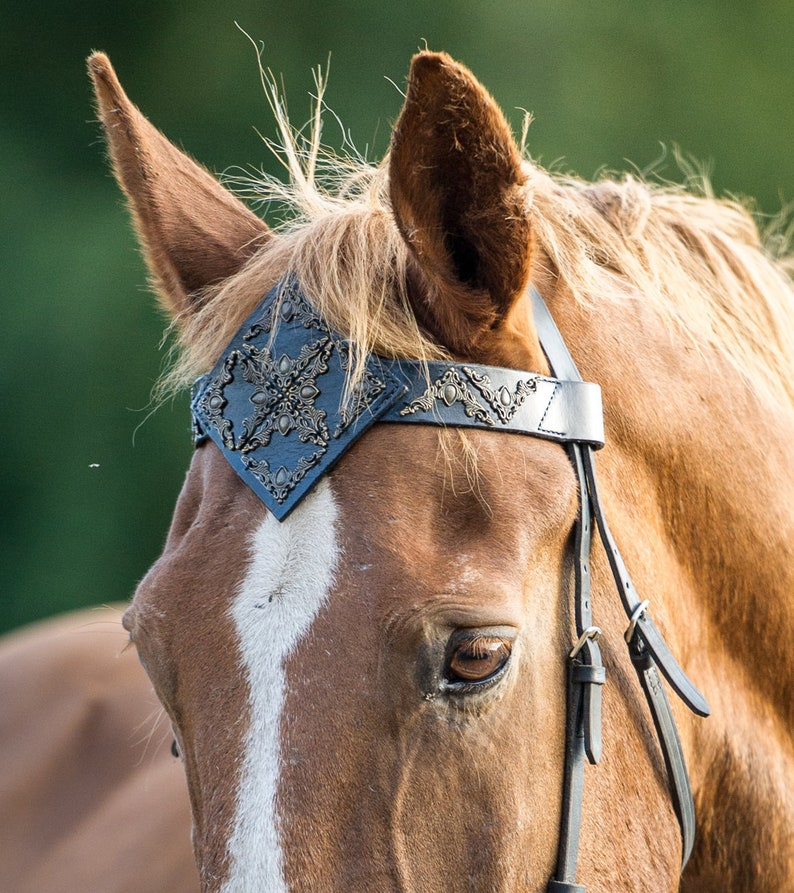 draft Jewellry brow band bling equine Costumes horses show parade tack Custom size /& colors 16 Leather browband for horse pony