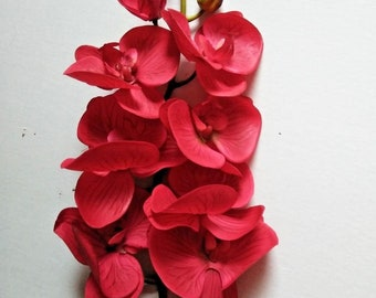 "41"" Phalaenopsis Orchid stem"