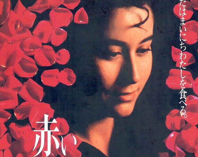 Like Water for Chocolate | 90s Mexican Cinema | 1993 original print | vintage Japanese chirashi film poster