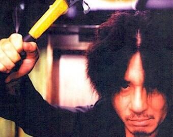 Oldboy (B) | Korean Cult Classic, Park Chan-wook | 2004 original print, foldout | Japanese chirashi film poster