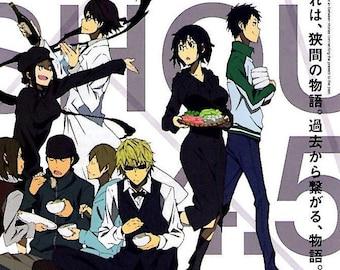 Durarara!!x2 Sho | Japan Anime Series | 2015 original print | Japanese chirashi film poster
