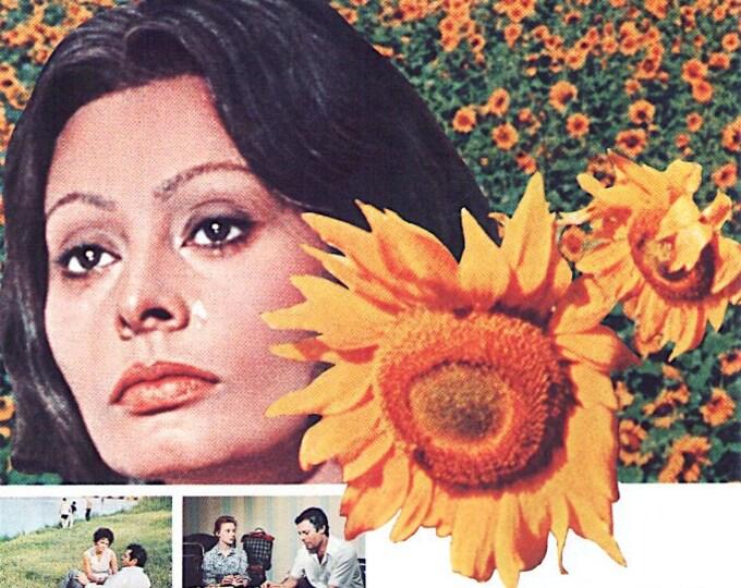 Sunflower (A) | 70s Italian Classic, Sophia Loren | 1974 print | vintage Japanese chirashi film poster
