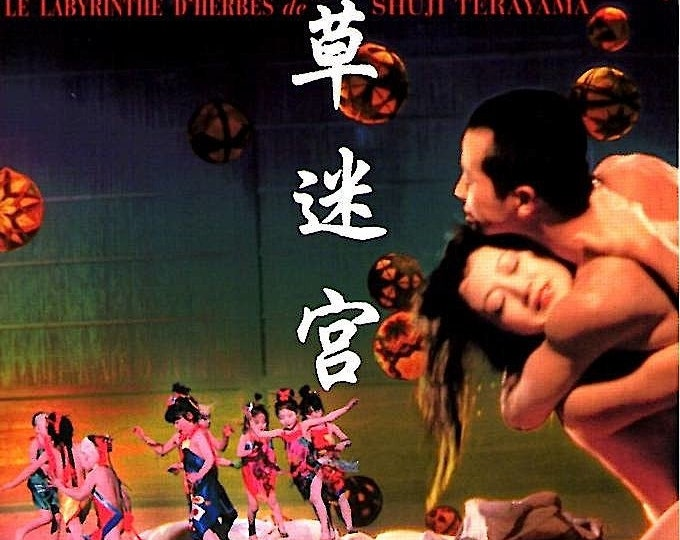 Grass Labyrinth (B) | 70s Cult Japan Cinema, Terayama Shuji | 2003 print | Japanese chirashi film poster