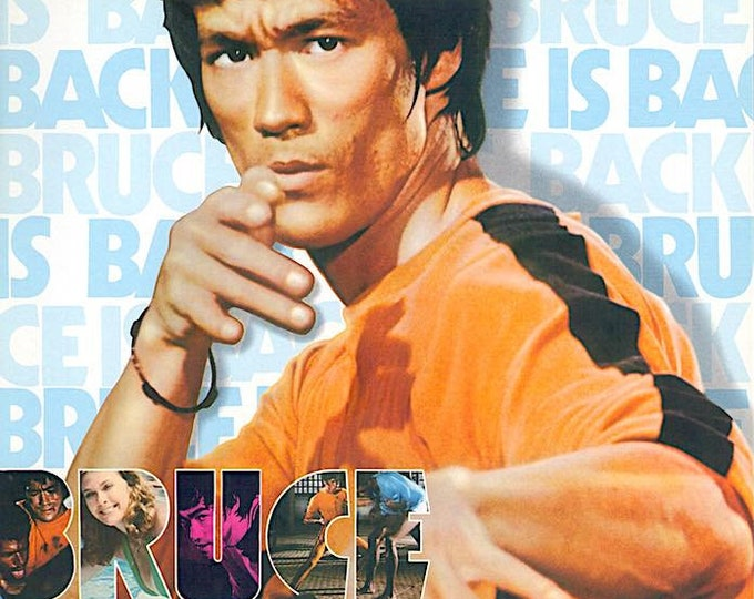 Game of Death (A) | 70s Kung fu Action, Bruce Lee | 1978 original print | vintage Japanese chirashi film poster